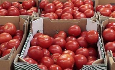 Bie çmimi i domateve në Maqedoni