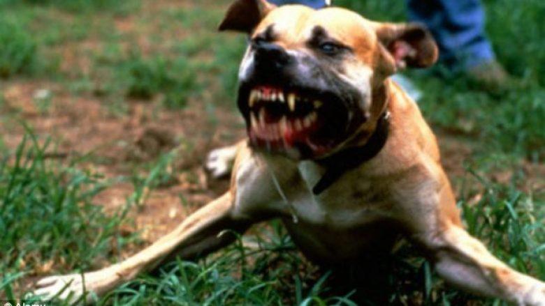 Maqedoni, për tre muaj 156 sulme nga qentë