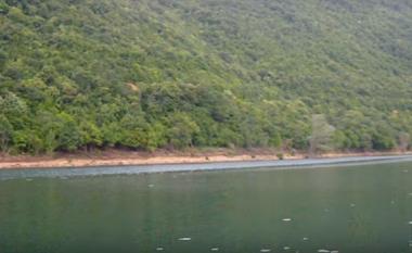 Liqeni i Glloboçicës pasurohet me peshq të rinj